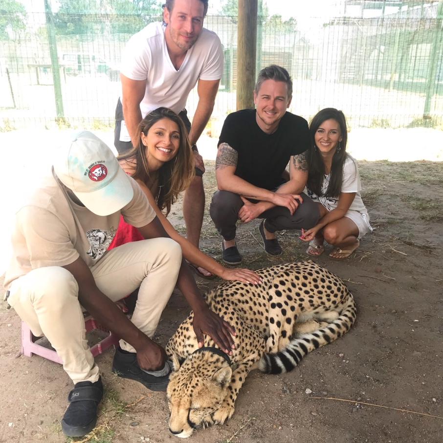 Cheetah Sanctuary South Africa