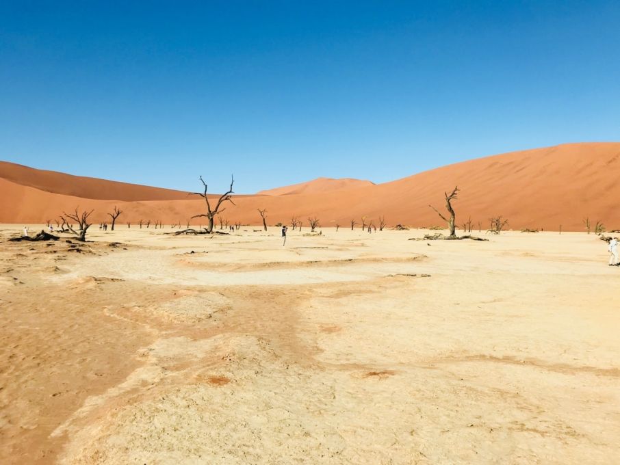 Roadtrip through Namibia Sossusvlei Desert Deadvlei