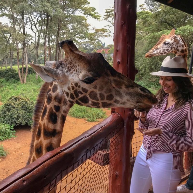 24 Hours in Nairobi Giraffe Center